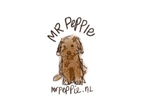 Logo Mr Peppie IT-mannetje
